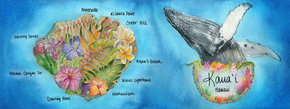 Kaua'i: Whale Watching in Paradise