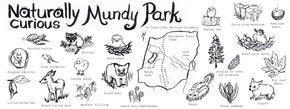 Naturally Curious Mundy Park